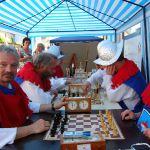 1075-calbe-rolandfest-193